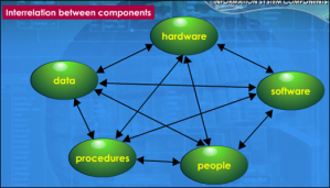 Components in IS